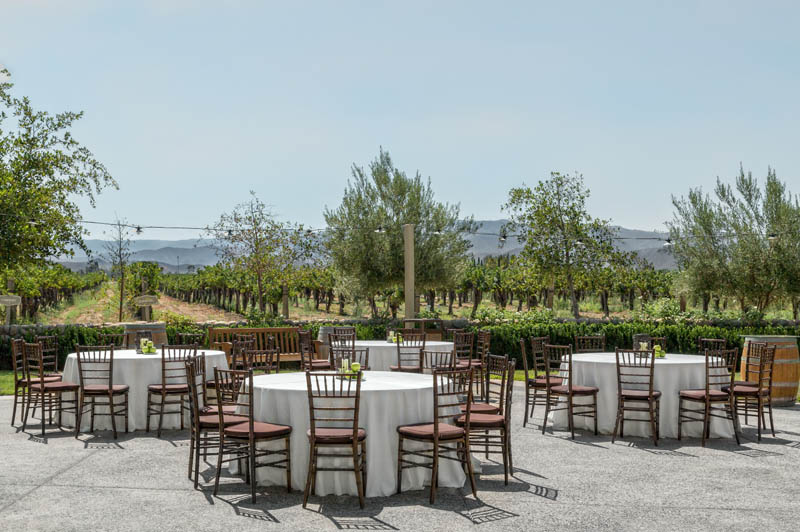 The Ponte Winery Vineyard View Terrace